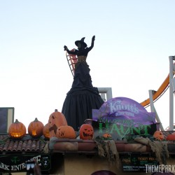 The Green Witch greeting guests at the entrance