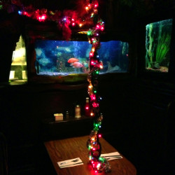 Christmas lights, garland and anchor chain-hung tables were a signature of Bahooka.