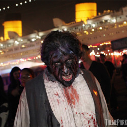 DARK_HARBOR_2013_4915