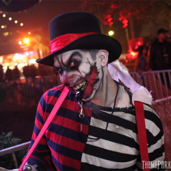DARK_HARBOR_2013_4919