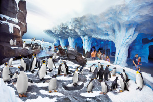 Advanced ride technology will deliver guests to the penguin habitat.