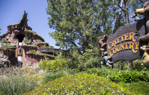 Splash-Mountain-Wide_5_14_DL_025571