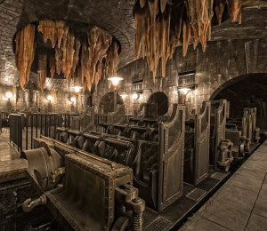 -resources-digitalassets-HP and the Escape from Gringotts 2