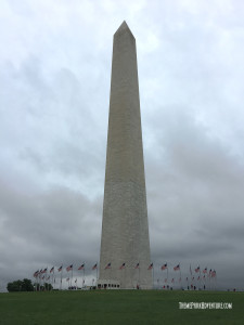 National_Mall_Washington (3)