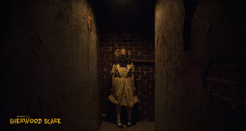 Sherwood Scare Basement