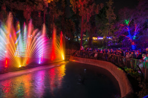 LA Zoo Lights Water Show - PHOTO CREDIT: Jamie Pham