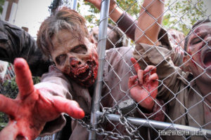 The Walking Dead Attraction_6523