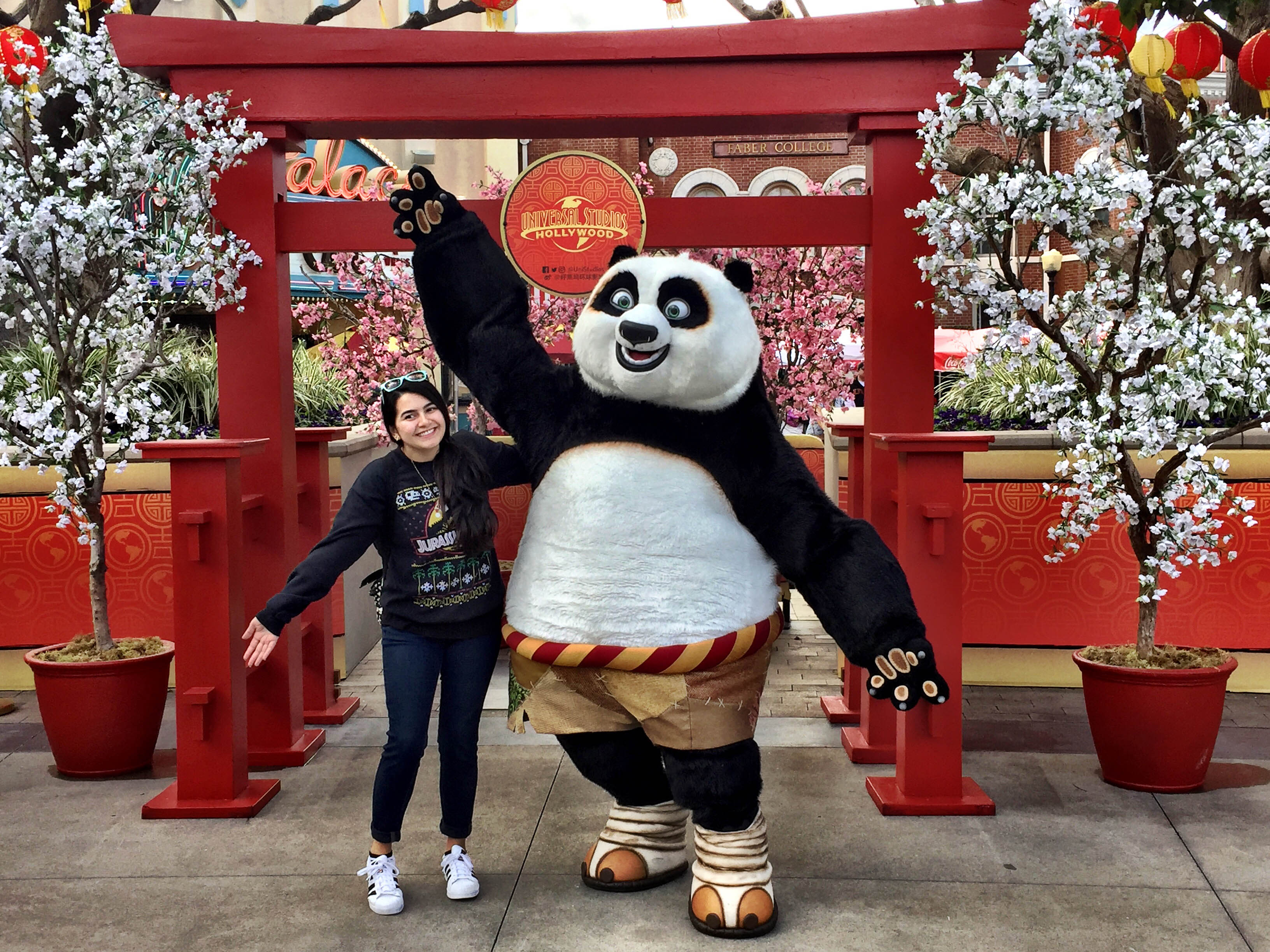 kung fu panda characters and more part of lunar new year